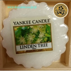 WOSK LINDEN TREE