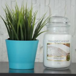 Angels Wings duża świeca Yankee Candle