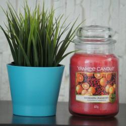 Mandarin Cranberry duża...