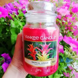 Tropical Junge duża świeca Yankee Candle